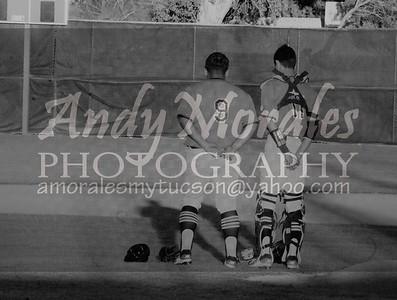 2017 baseball amphi desert view