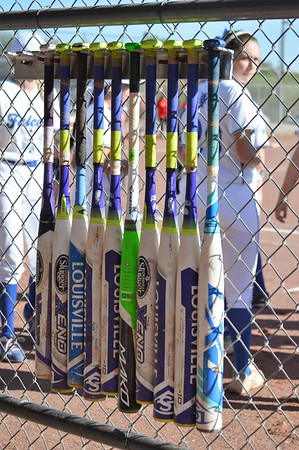 2017 softball Tucson Catalina Foothills