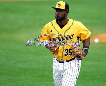 8/29/2017 Mike Orazzi | Staff New Britain Bees' Jovan Rosa (35) during Tuesday's game with the Sugar Land Skeeters.
