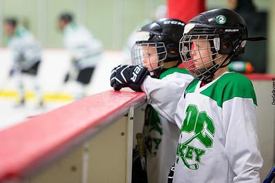 LDC Boys Hockey