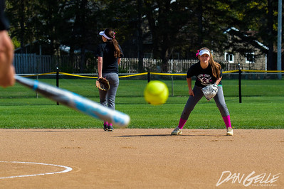 Dragon Softball Strike Out Cancer Game