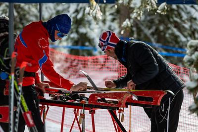 Meissner Nordic Race