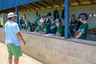 Babe Ruth Baseball Litch Black vs Green