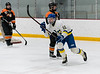 HK_LakeForest_Icecats_0198