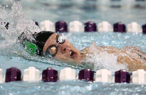 1-9-18<br /> Northwestern vs Eastern swimming<br /> Eastern's Dayle Matheny in the girls 200 freestyle.<br /> Kelly Lafferty Gerber | Kokomo Tribune