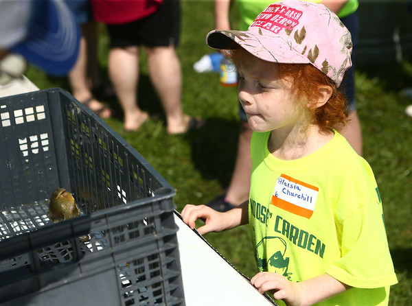 7-28-18<br /> Kids Fishing Clinic<br /> Alaisia Churchill peeks at her fish during the weigh-in at the Kids Fishing Clinic on Saturday.<br /> Kelly Lafferty Gerber | Kokomo Tribune