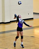 Mount Vernon Varsity Lady Tigers vs Redwater Lady Dragons Volleyball Bi-District game photos
