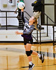 Mount Vernon Varsity Lady Tigers vs Tatun Lady Eagles Volleyball Area playoff game photos