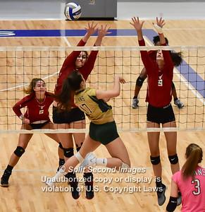 2018 Lambert Girls Volleyball vs Blessed Trinity