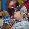 2018 McCall Winter Carnival. McPaws dog pull