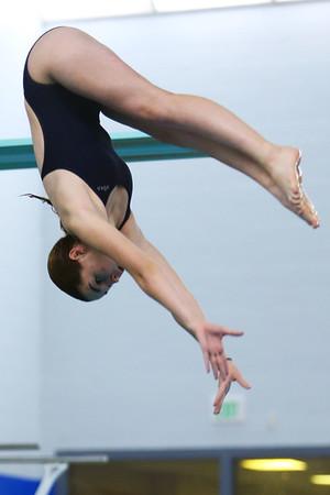 Kokomo's Kaitlyn McGraw diving during the swim meet between KHS and WHS girls on Nov. 13, 2018.  Tim Bath   Kokomo Tribune