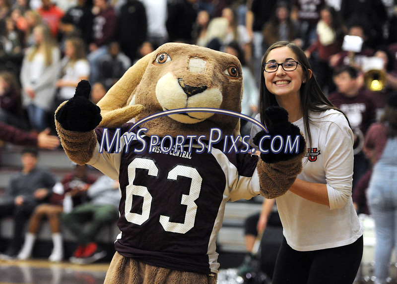 1/19/2018 Mike Orazzi   Staff<br /> The Bristol Central High School Rams mascot during Friday night's boys basketball game.