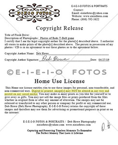 2019 Copyright Release Home Use License