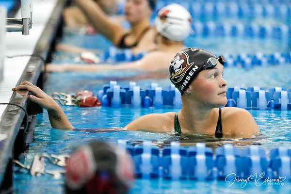 FSU Swim Dive - 02-21-2019