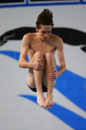 Kokomo's Cameron Harris diving during the swim meet between Kokomo HS and Northwestern HS on Monday December 16, 2019. <br /> Tim Bath | Kokomo Tribune