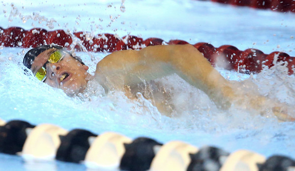 12-3-19<br /> Western swimming<br /> Charlie Conckle swims the freestyle in the boys 200 yard medley relay.<br /> Kelly Lafferty Gerber | Kokomo Tribune