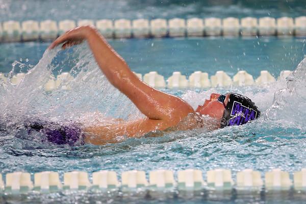 Northwestern's Drew Gingerich swimming the100 backstroke during the swim meet between Kokomo HS and Northwestern HS on Monday December 16, 2019. <br /> Tim Bath | Kokomo Tribune