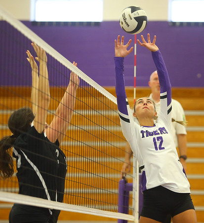9-3-19<br /> Northwestern vs Clinton Central volleyball<br /> NW's Madison Layden sets the ball.<br /> Kelly Lafferty Gerber | Kokomo Tribune