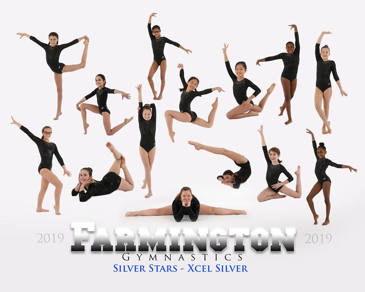 Silver Stars Xcel Silver