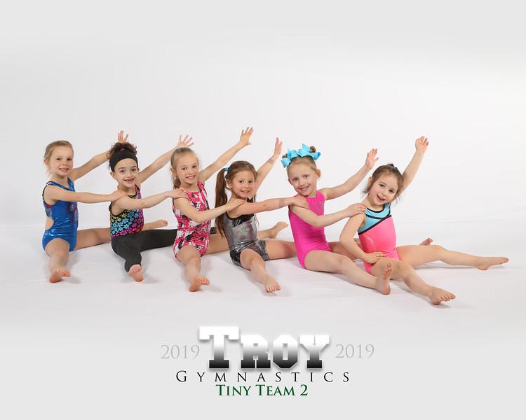 Tiny Team 2