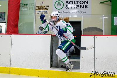 LDC Girls Hockey vs MW-WM-SWC