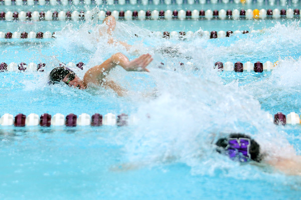 Northwestern Swimming & Diving on Dec. 8, 2020. <br /> Ethan Champion<br /> Tim Bath | Kokomo Tribune