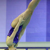 1-28-20<br /> Northwestern vs Western swimming<br /> NW's Camber Fillenwarth dives.<br /> Kelly Lafferty Gerber | Kokomo Tribune