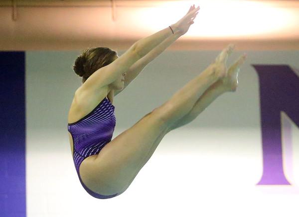 1-28-20<br /> Northwestern vs Western swimming<br /> NW's Camber Fillenwarth dives.<br /> Kelly Lafferty Gerber | Kokomo Tribune