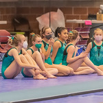 2021-03-05 Jorie's Gymnastics Competition_0062
