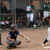 Amherst 's Amanda Crisler flys out to right field against Midview. Randy Meyers -- The Morning Journal