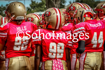 49er's vs Bills Super Midget Action 2015