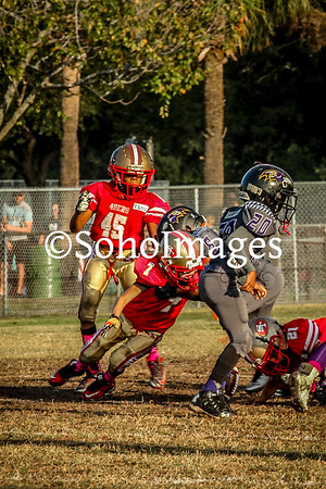 49er's vs Ravens Peewee Action 2015