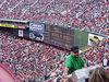 Taking a look around the stadium.