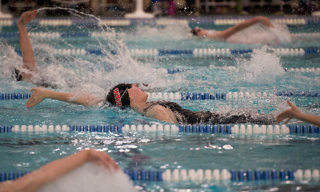. Loveland\'s Erin Lang swims the backstroke during the 200-yard medley relay finals Saturday afternoon at EPIC in Fort Collins during the 2017 CHSAA Girls 4A State Championships.  (Michael Brian/For the Reporter-Herald)