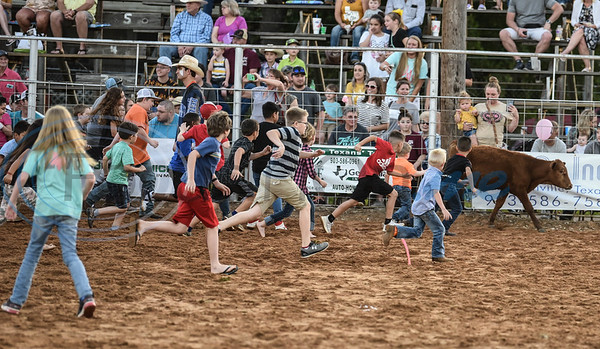Young children chase after a cow during the calf scramble event at the 57th TOPS in Texas Rodeo on Thursday, May 16. The event took place in Jacksonville and included bull riding, steer wrestling, bareback riding, mutton busting and more. (Jessica T. Payne/Tyler Morning Telegraph)