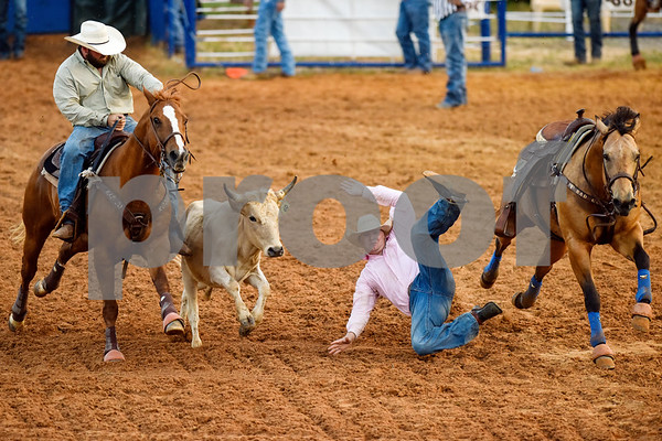 A man falls to the ground while attempting to grab a steer during the steer wrestling event at the 30th annual Lindale Championship Rodeo in Lindale, Texas, on Thursday, May 18, 2017. The rodeo featured everything from cattle roping and mutton busting to bull riding and calf scrambles. (Chelsea Purgahn/Tyler Morning Telegraph)
