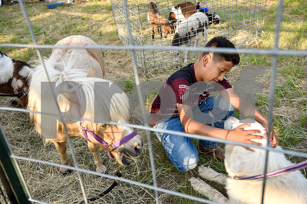 Pablo Jimenez, 11, pets a dog during the 30th annual Lindale Championship Rodeo in Lindale, Texas, on Thursday, May 18, 2017. The rodeo featured everything from cattle roping and mutton busting to bull riding and calf scrambles. (Chelsea Purgahn/Tyler Morning Telegraph)