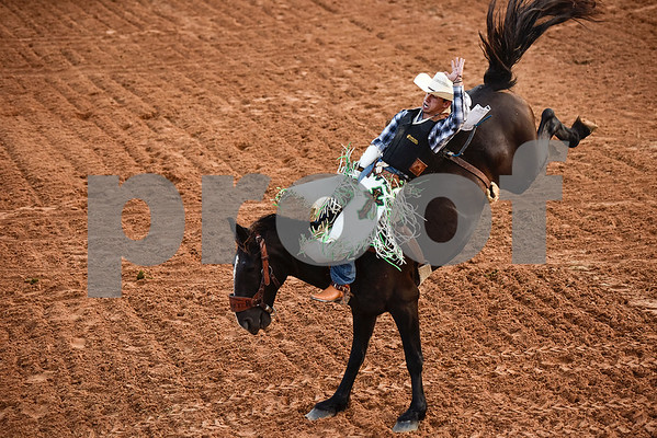 Travis Chapman competes in bareback bronc riding during the 30th annual Lindale Championship Rodeo in Lindale, Texas, on Thursday, May 18, 2017. The rodeo featured everything from cattle roping and mutton busting to bull riding and calf scrambles. (Chelsea Purgahn/Tyler Morning Telegraph)