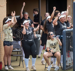 Texas Lutheran University players and staff celebrate a run from the dugout during their game against Emory University on Monday May 27, 2019 in the NCAA Division III Softball Championship at Suddenlink Field in Tyler.   (Sarah A. Miller/Tyler Morning Telegraph)