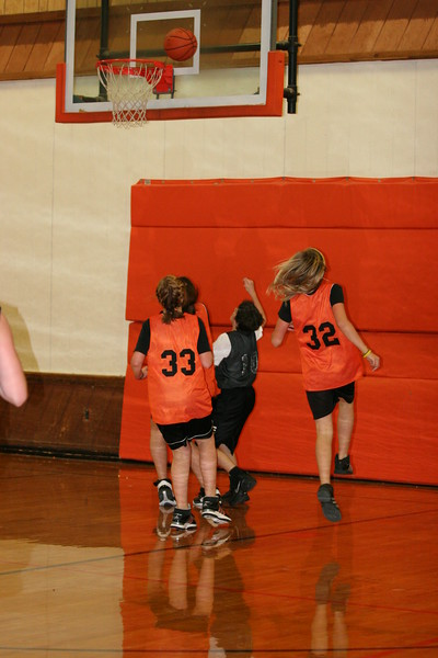 b-ball 6th girls tigers team w08-09 070