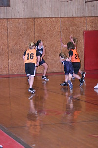 b-ball 6th girls tigers w08-09 035