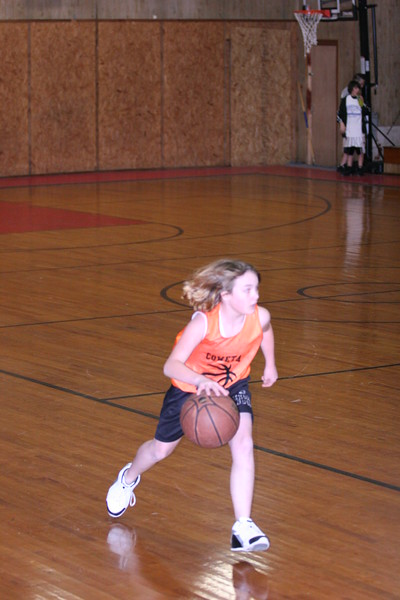 b-ball 6th girls tigers w08-09 028