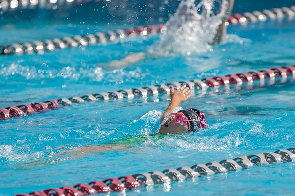 7-26-1014 Sierra College Swim Meet -Sophia Haley