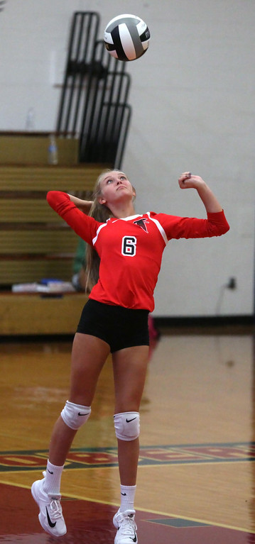 . Randy Meyers -- The Morning Journal Alaina Kempf of Firelands serves against Oberlin.