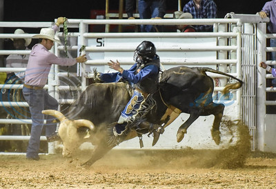 Kyle McDaniel of Fort Worth attempts eight seconds during the 2019 Nicky Wheeler Memorial Bull Riding event in Jacksonville. Forty bull riders competed in the event which took place on Saturday, September 28. (Jessica T. Payne/Tyler Morning Telegraph)