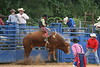 Liberty MS Rodeo 09 08 2007 A 017