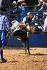 Liberty MS Rodeo 09 09 2007 B 096