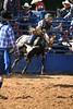 Liberty MS Rodeo 09 09 2007 B 095