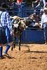 Liberty MS Rodeo 09 09 2007 B 099