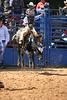 Liberty MS Rodeo 09 09 2007 B 089